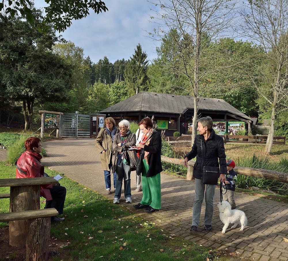 Netzwerk Ausflug in den Vogelpark Steinen 2.10.13 Nr.10
