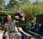 Netzwerk Ausflug in den Vogelpark Steinen 2.10.13 Nr.4