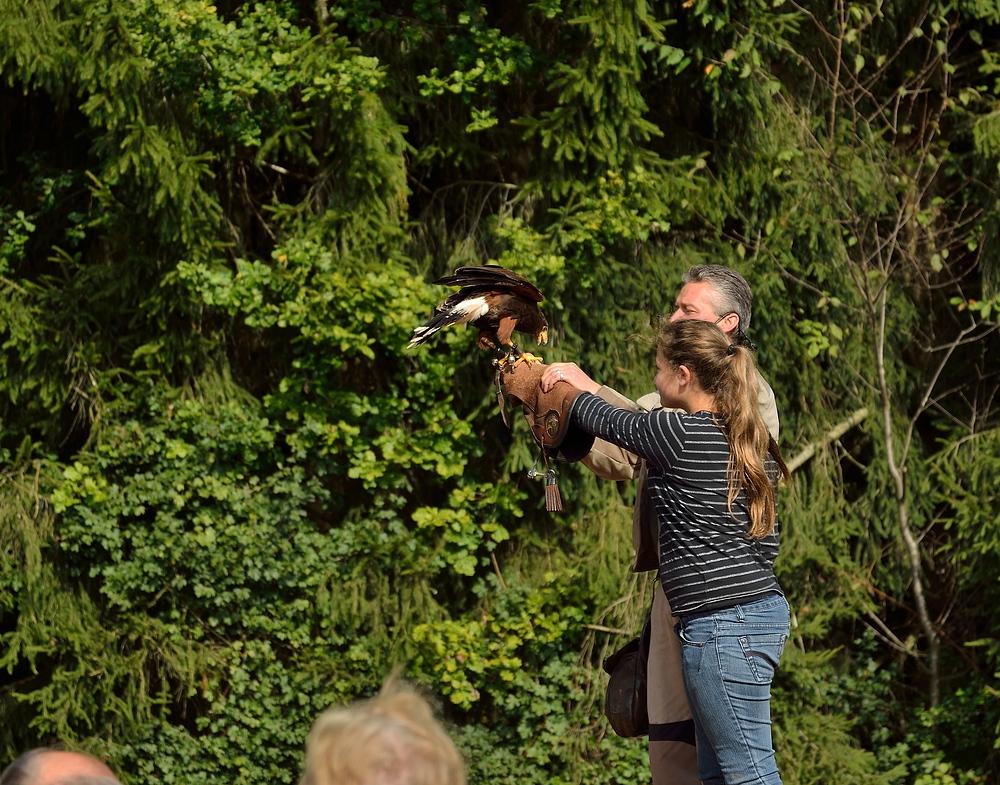 Netzwerk Ausflug in den Vogelpark Steinen 2.10.13 Nr.6