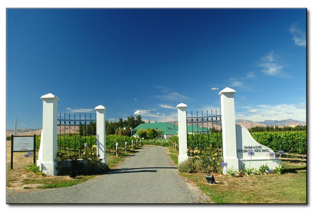 Neu Seeland, Südinsel, wieder ein Weingut