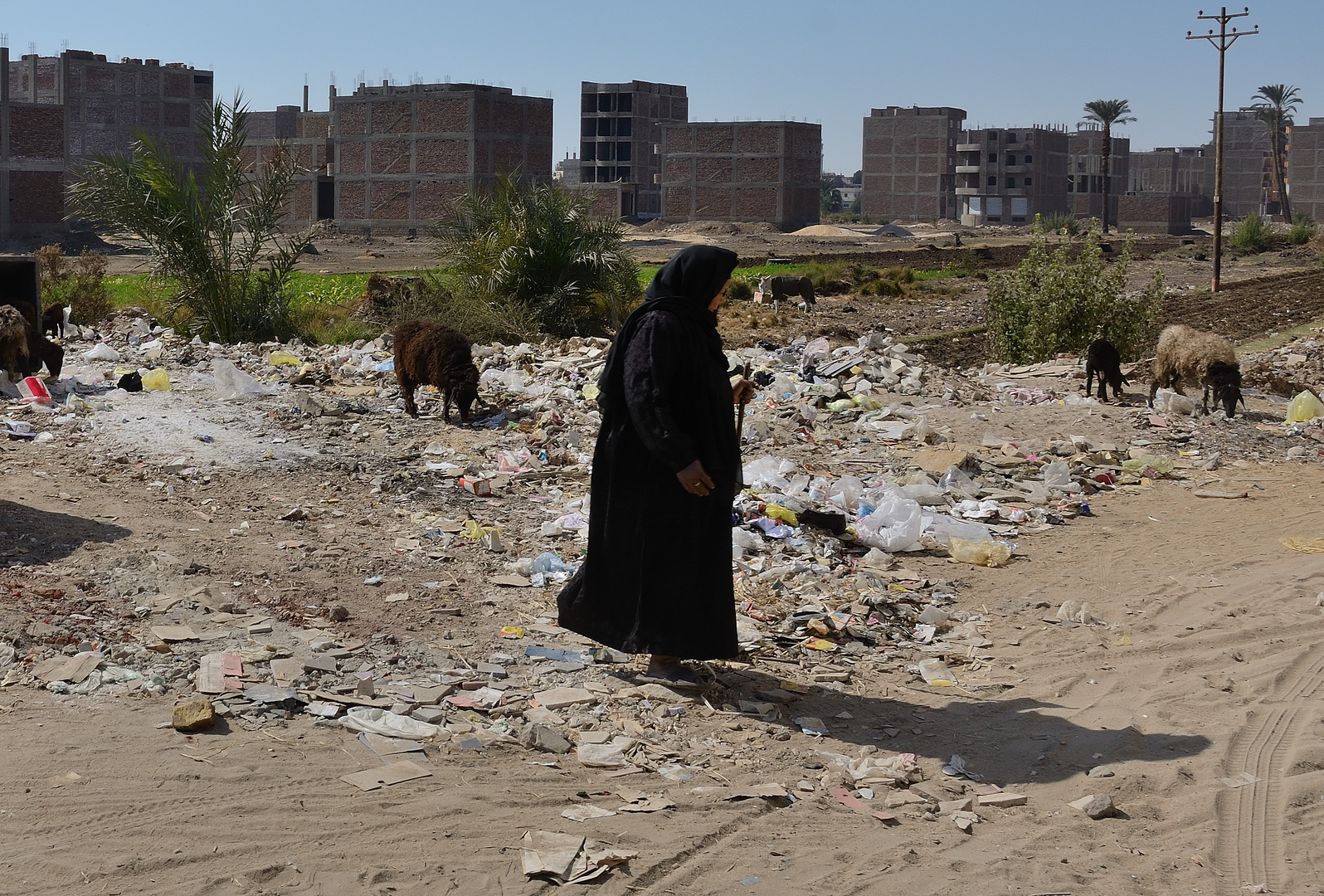Neubaugebiet in Luxor
