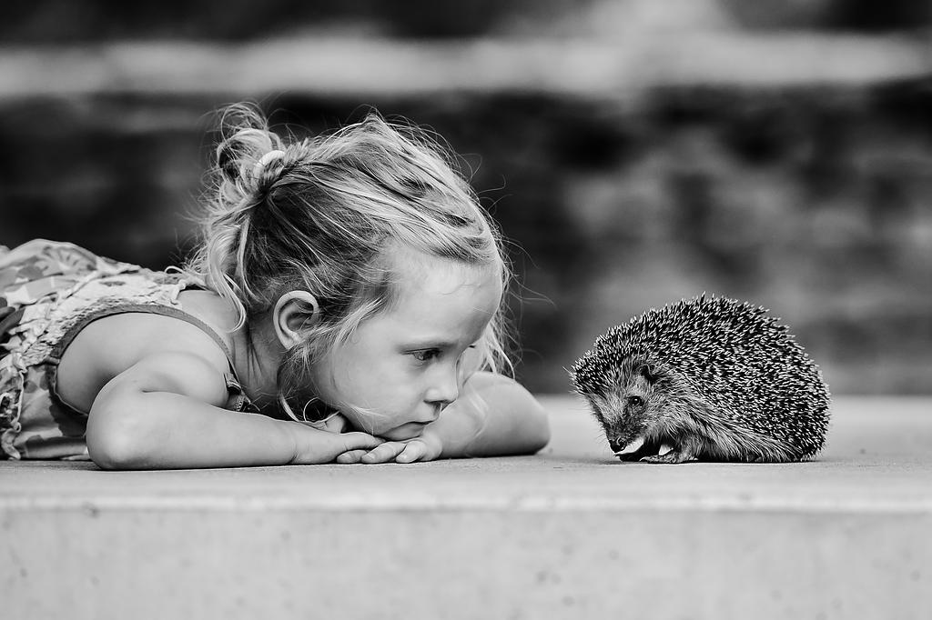 ...neue Freunde...