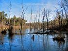 Neue Seen über der Kohle