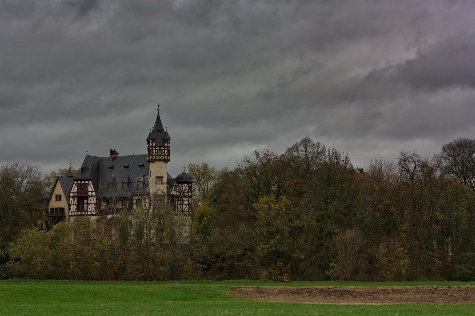 Neues Schloss Büdesheim