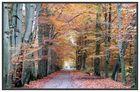 Neues vom Herbst