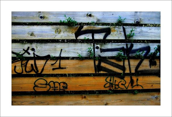 NEUGIERIG auf Graffiti...