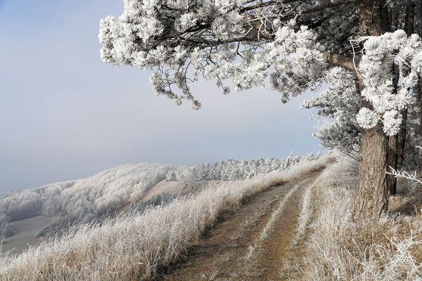 Neujahrs-Spaziergang