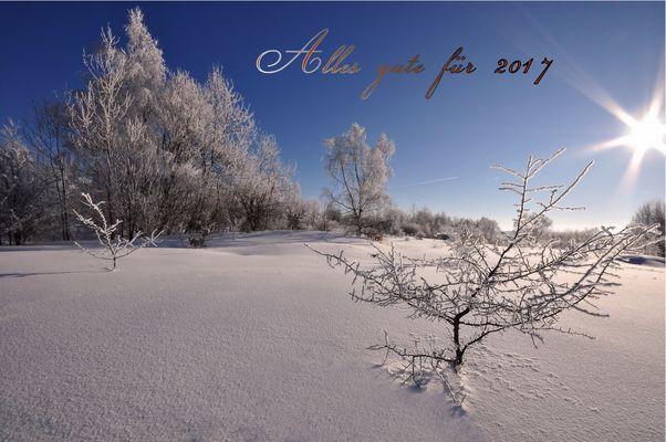 Neujahrsgrüße....