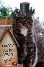 Neujahrsgrüße von GISMO