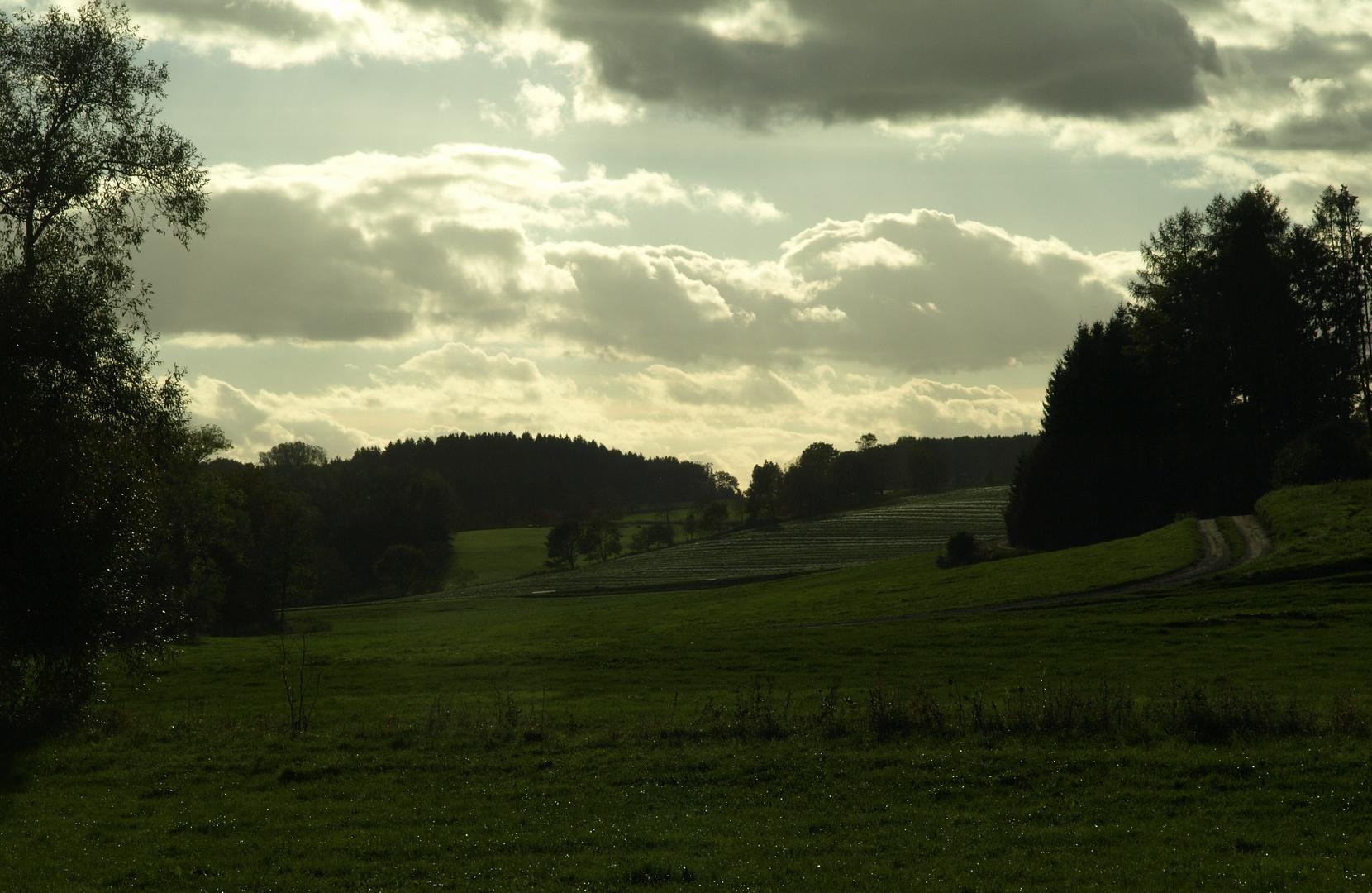 neulich abends im Rotbachtal