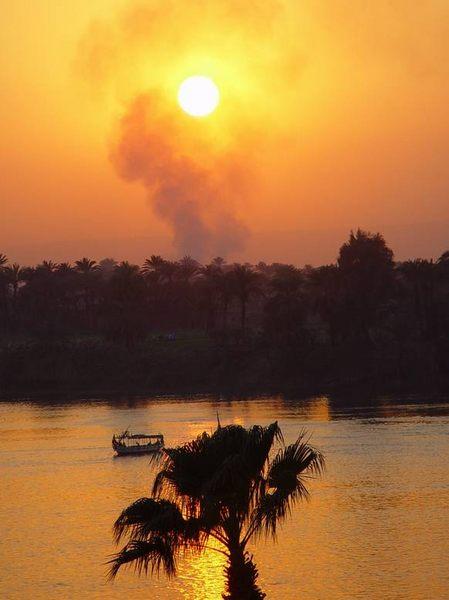 Neulich am Nil... II