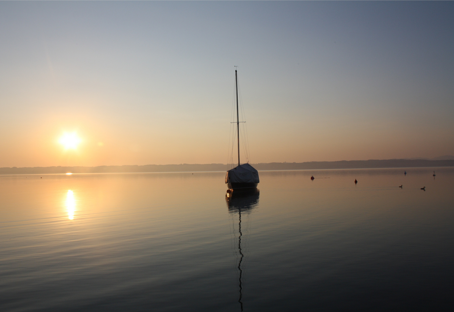Neulich am Starnberger See...
