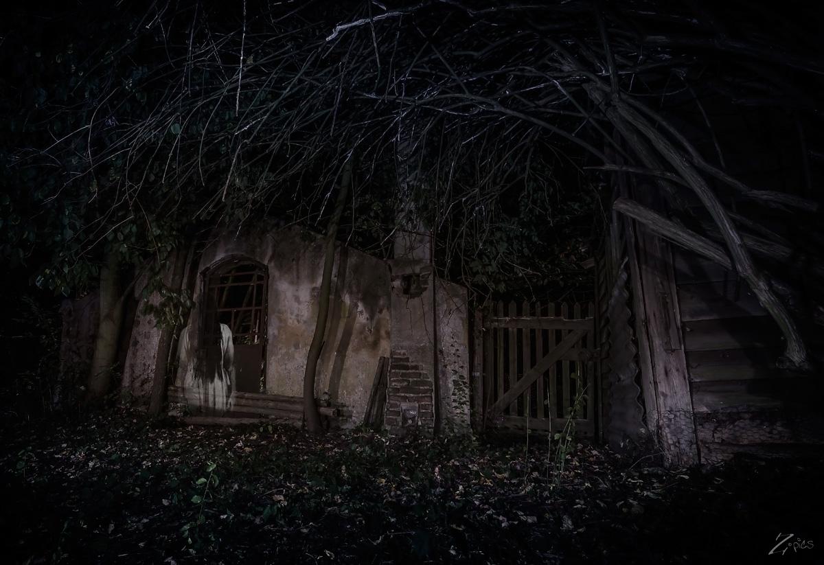 Neulich im Wald oder Lost-places