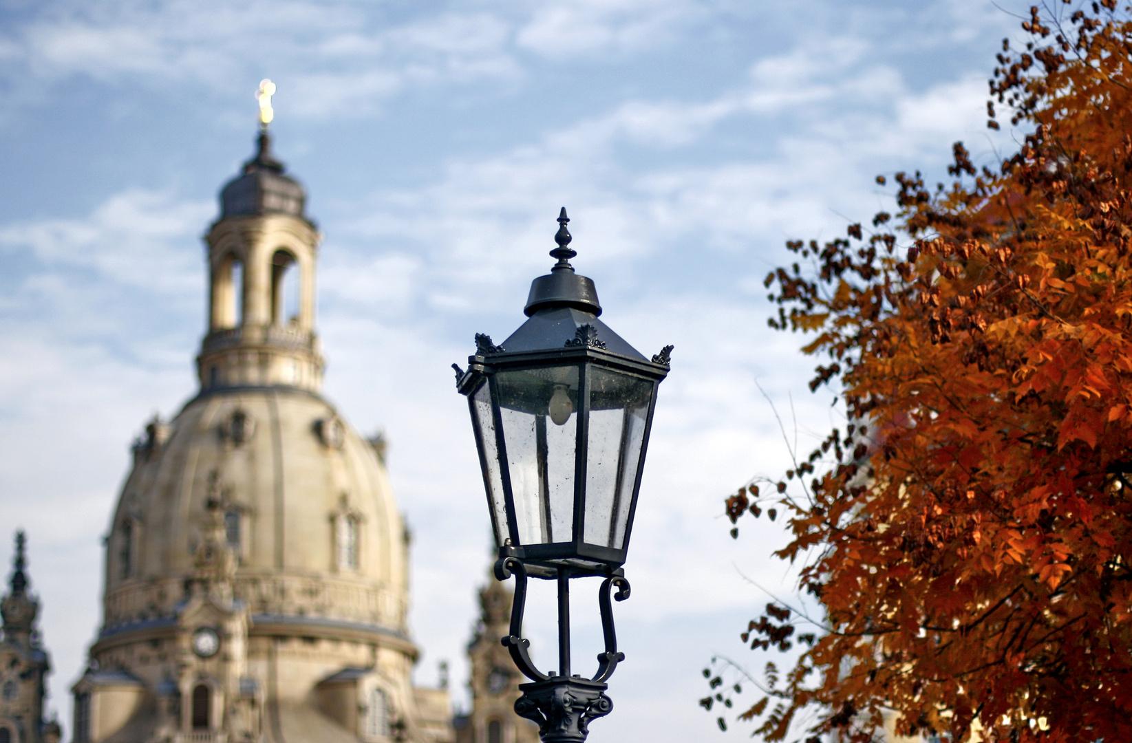 Neulich in Dresden 5