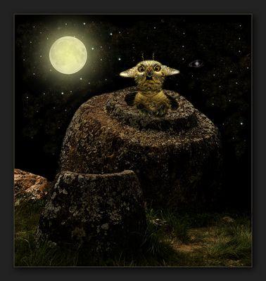 """neulich nachts in der """"Ebene der Tonkrüge"""""""