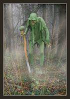 Neulich tief im Wald ....
