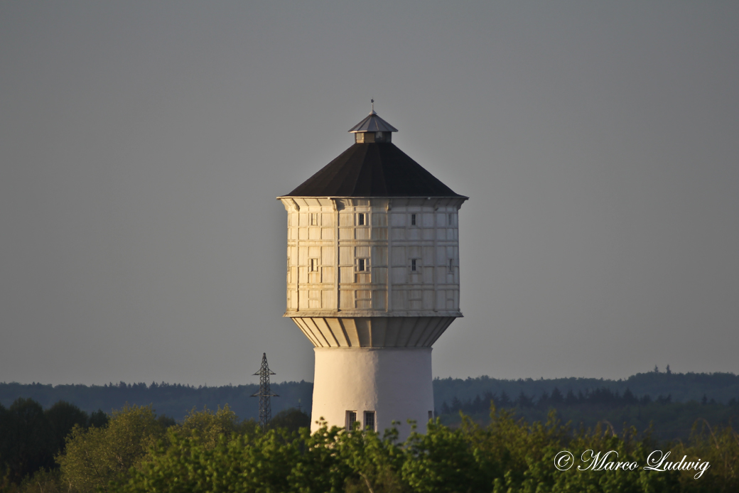 Neumünsters Wasserturm im Grünen