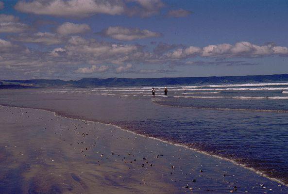 Neunzig Meilen Strand...