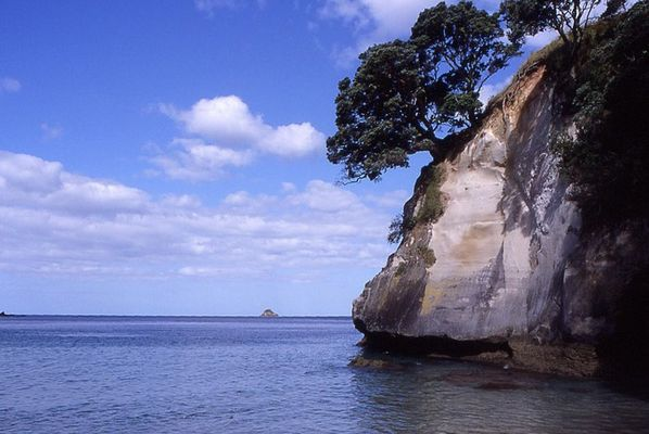Neuseeland Cathedral Cove Jan 2004