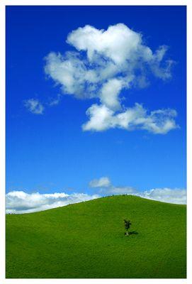 Neuseeland _I