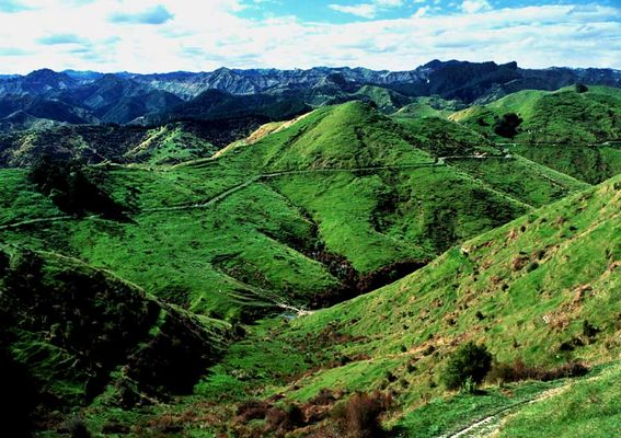 Neuseeland, Nordinsel