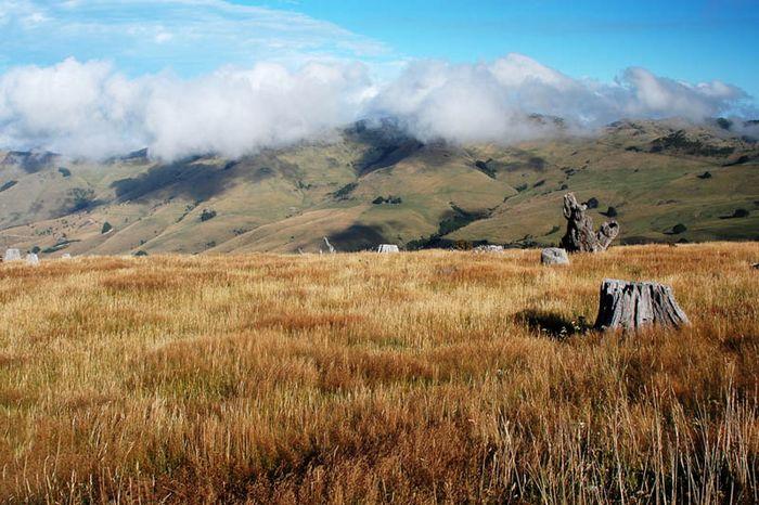 Neuseeland Südinsel 2004