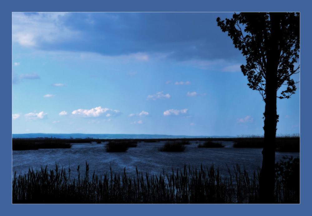 Neusiedler See in blue