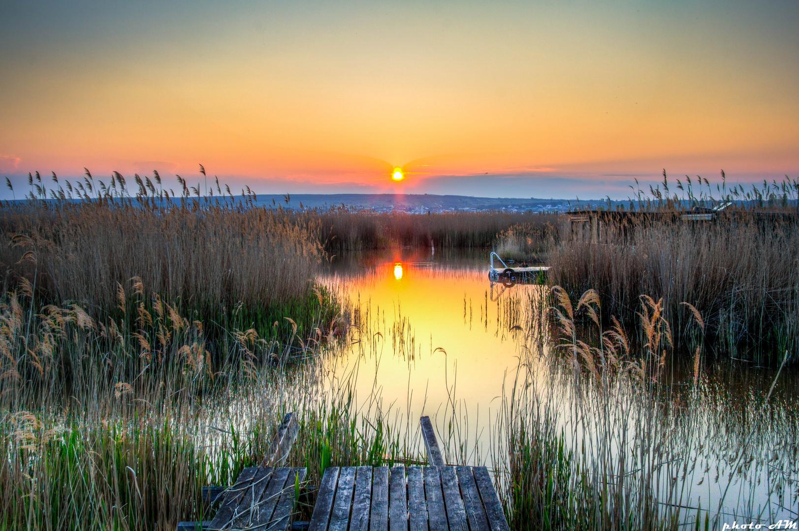 Neusiedler Sonnenuntergang