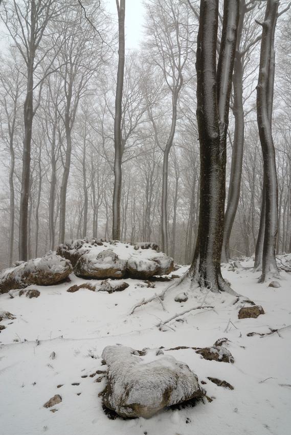 Nevando en Opakua