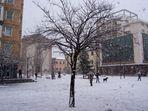Neve..