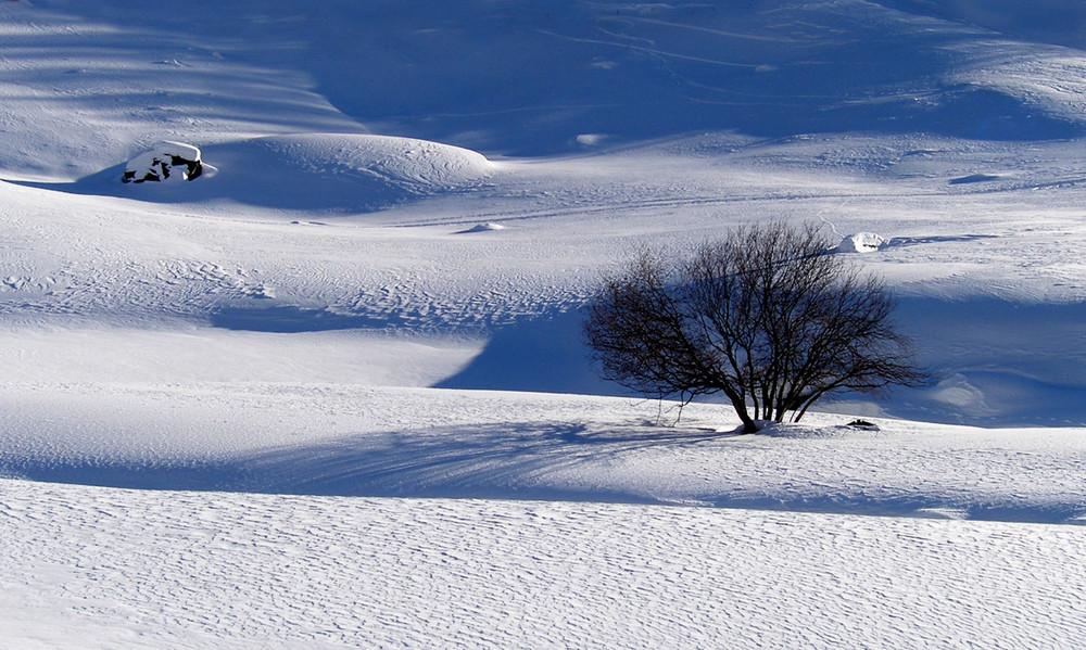 Neve a Casere di Predoi(BZ)