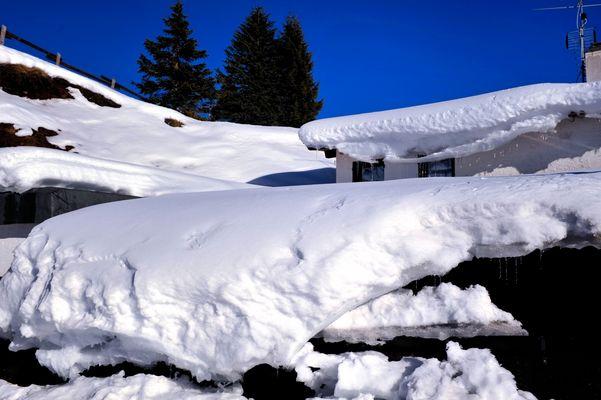 Neve ad alta quota