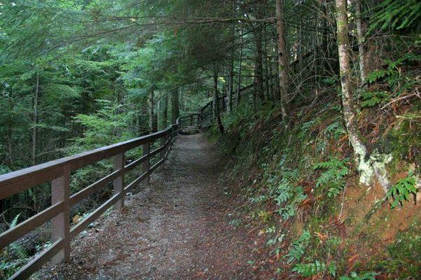 Never ending trail