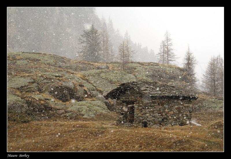 Nevica !!!
