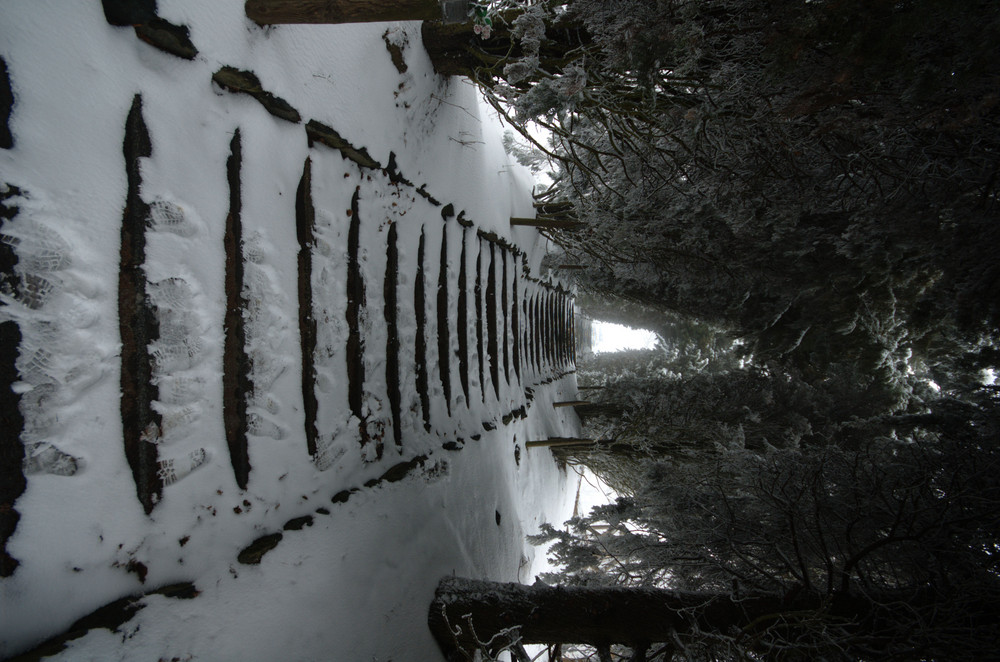 nevicata al parco