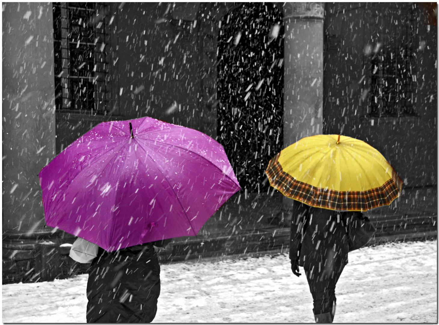 Nevicata alla bolognese XI