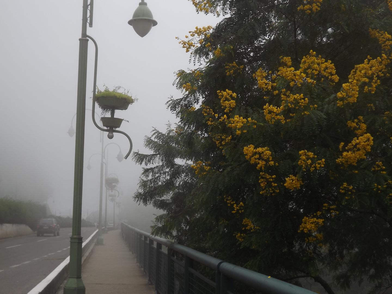 NEVOEIRO NA SERRA (CIDADE DE GRAMADO, SERRA GAUCHA, RIO GRANDE DO SUL, BRASIL)