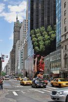 New York 2007 -1