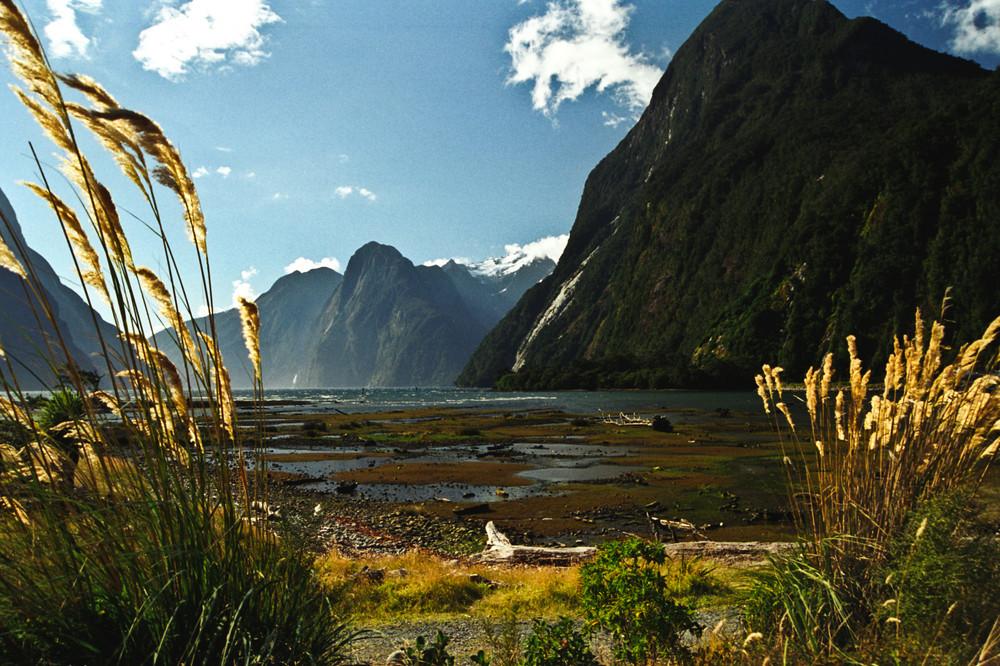 New Zealand Milford Sound 2