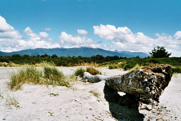 New Zealand Westcoast of the South Island