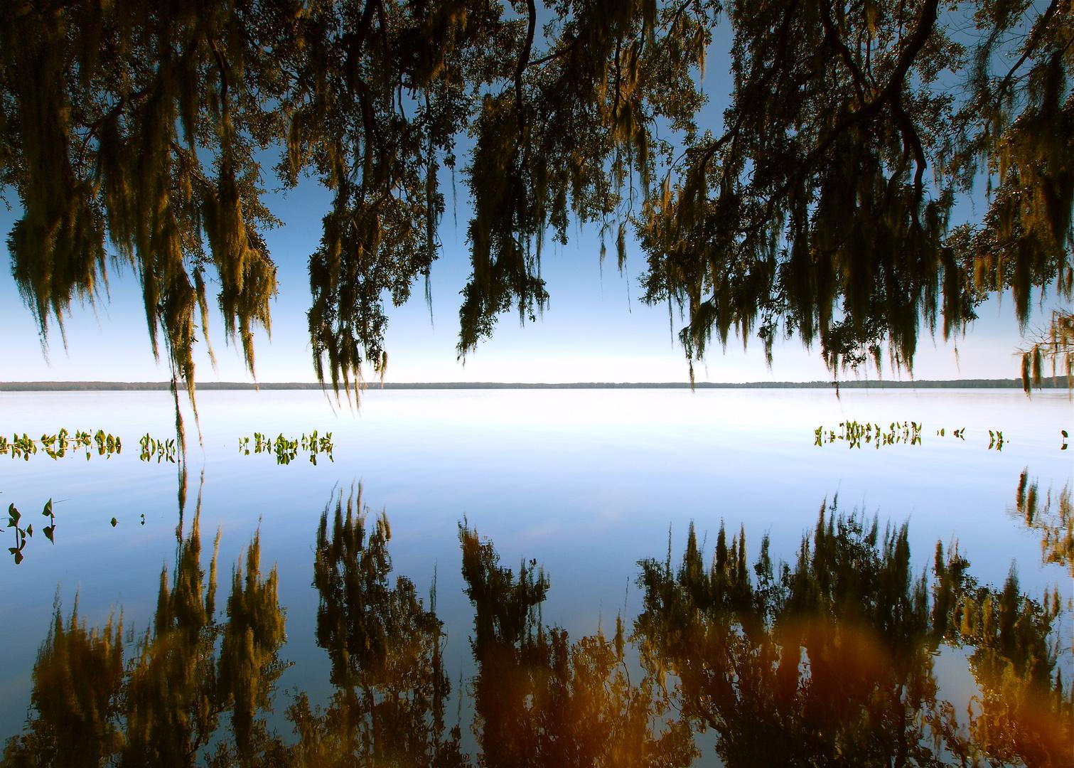 Newmans Lake