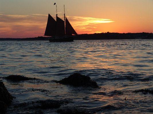 Newport Sonnenuntergang