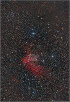 NGC 7380 (Der Hexennebel)