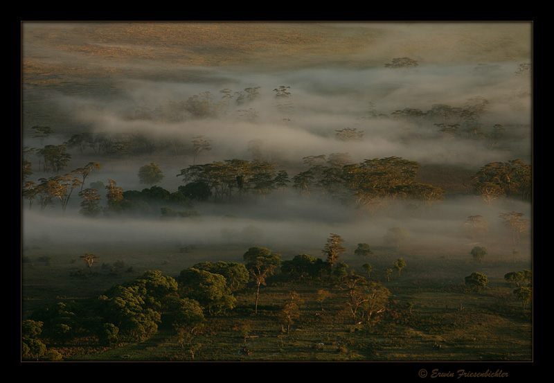 Ngorongoro 02
