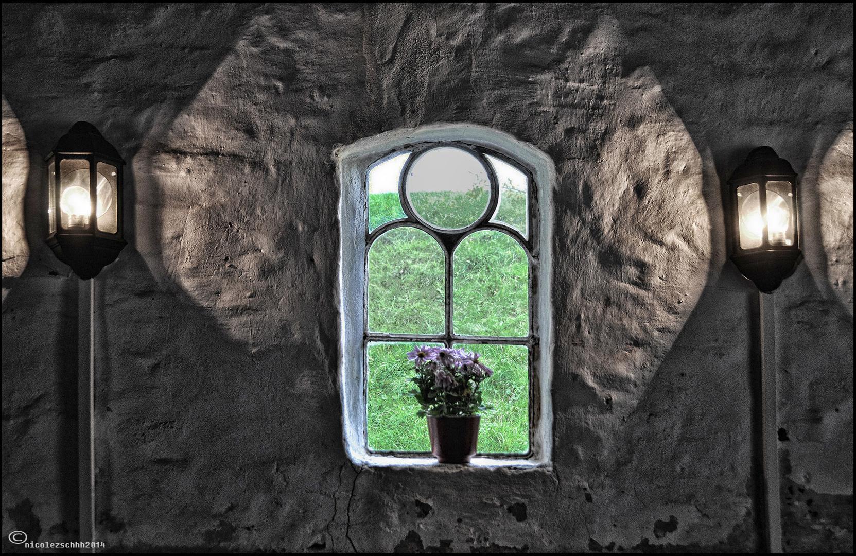 Nicht das Fenster zum Hof, aber das Fenster zum Deich..;-)