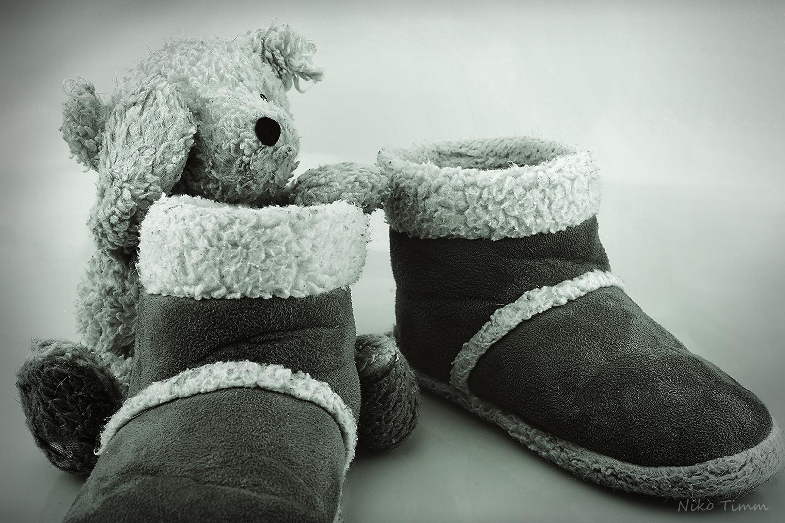 Nicht jeder kann ein Teddy werden