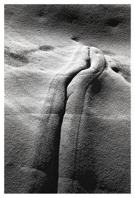 nichts als Formen. natur als kunst 2