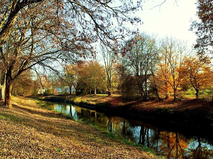 Nidda im Herbst