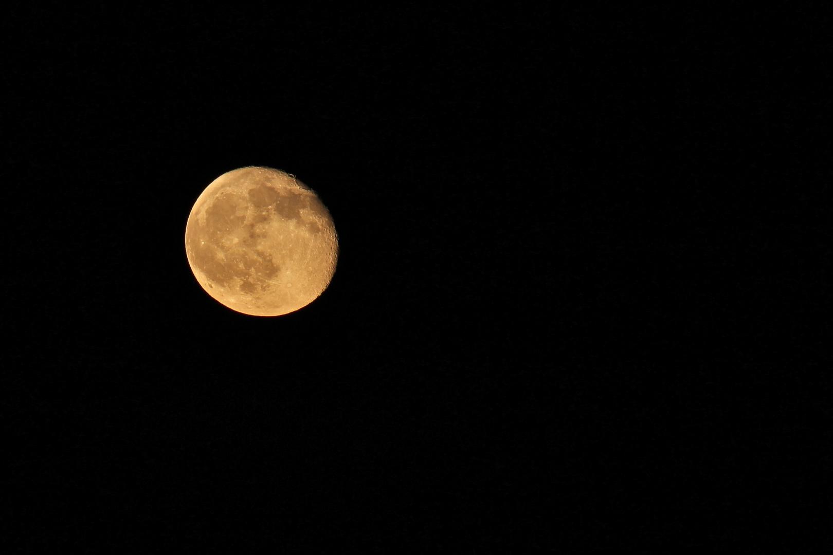 Nidderauer Mond