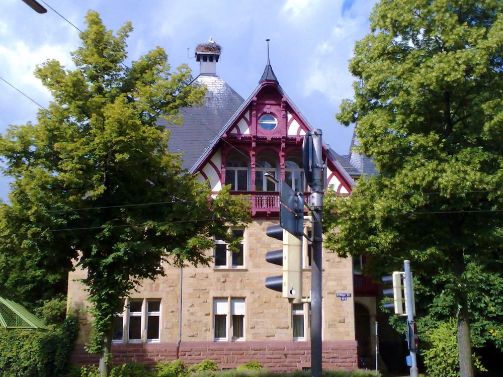 nido di cicogna in Karlsruhe